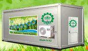 Гидропонное оборудование для выращивания готового корма. Туркестан